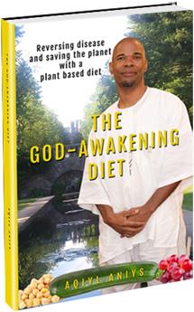 The God-Awakening Diet Book