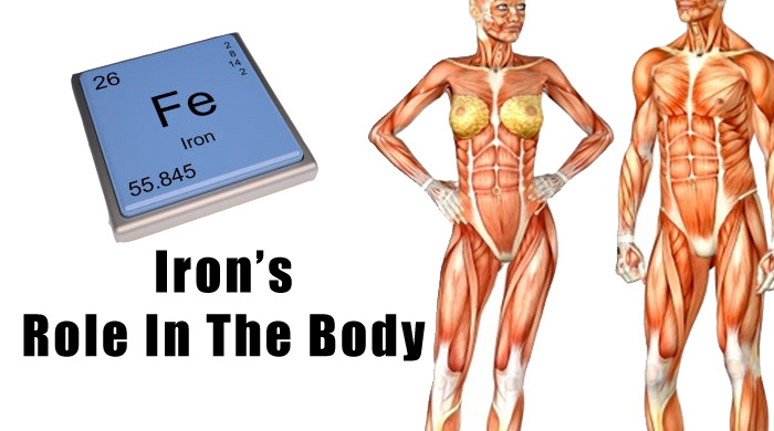 Iron Benefits