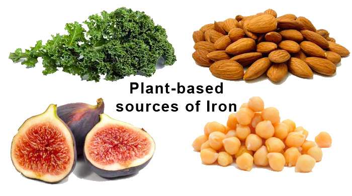 Non-Heme Iron Sources