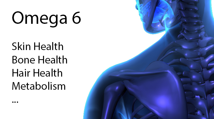 Omega-6 - Skin, Hair, Bone Health