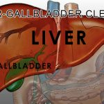 How to Clean your Liver – Gallbladder | Liver – Gallbladder Cleanse