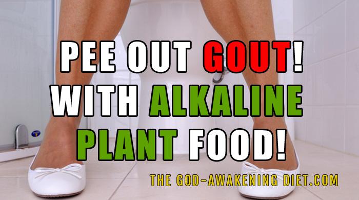 symptoms for high uric acid level apple cider vinegar during gout attack gout in big toe won't go away