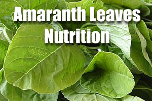 Amaranth Leaves Nutrition