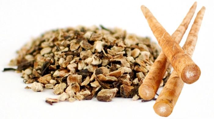 Benefits of Burdock Root in Detoxifying the Blood