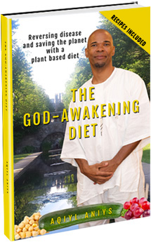 The God-Awakening Diet Book