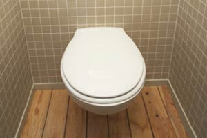 How Often Should I Go To The Bathroom?