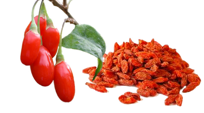 Goji Berries What Are Goji Berries And Their Benefits