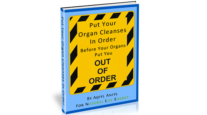 Free E-book - Put Your Organ Cleanses In Order Before Your Organs Put You Out Of Order
