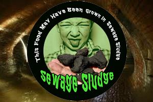 Crops Grown In Sewage Sludge! WTF?