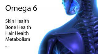 What is Omega-6 | Omega-6 Fatty Acid Benefits