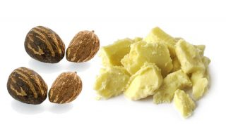 What Is Shea Butter? Shea Butter Benefits For Skin Care
