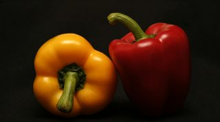 Science Says A Whole Food Plant Based Diet Provides The Best Foods To Eat