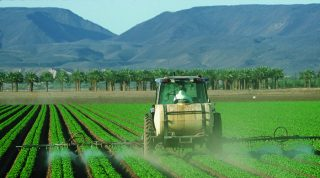 Eating Organic Foods Reduces the Amount of Pesticides You Consume Protecting Against Disease