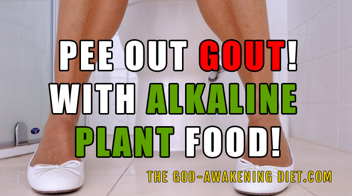 An Alkaline Diet And Gout