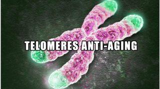 Telomeres Anti-Aging