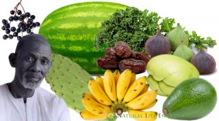 Dr. Sebi Nutritional Guide - Mucus Reducing Alkaline Diet