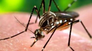 CDC Director Tom Frieden Says Government Out Of Zika Money
