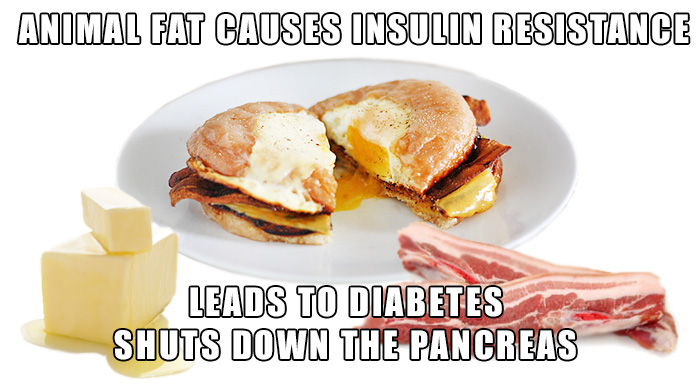 Animal Protein And Fat Shuts Down The Pancreas And Leads To Diabetes