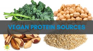 Find Your Vegan Protein Sources Here