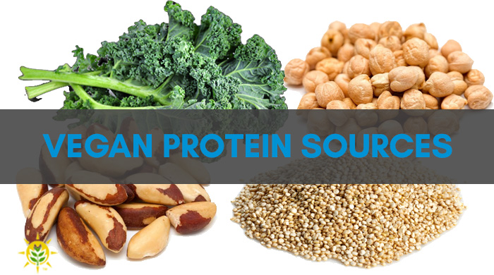 Vegan Vegetarian Protein Sources - Don't Worry