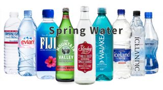 Drink Spring Water To Support The Health Of Your Organs