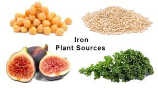 Iron Plant Sources