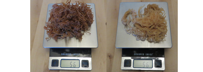 Irish Moss - Sea Moss 56 grams dry