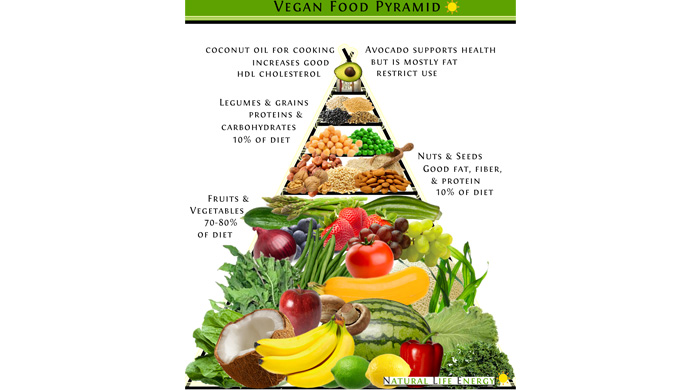 Vegan Food Pyramid Free Infographic Alkaline Plant Based Diet