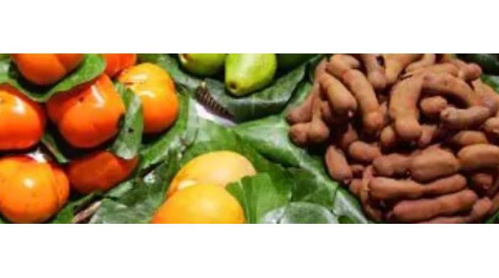 Whole Food Plant Based Diet Works Better Than Diabetic Diet In Treating Diabetes