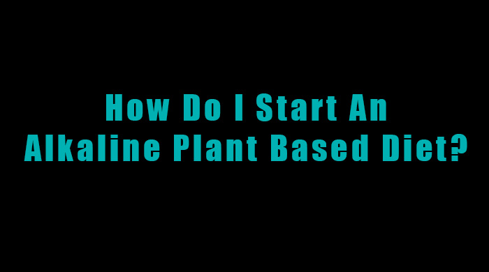 Guide To Starting An Alkaline Plant Based Diet